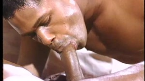 Carlton Banks-lookalike gets fresh with his prince - Stallion Video