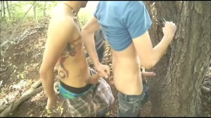 2 Twinks Sucking And Fucking In Public Park