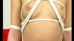 It takes two people to tie her up - Julia Reaves