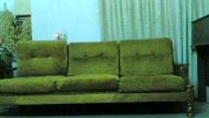 AsianSexPorno.Com - Indonesia chick fucked on couch