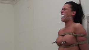 Vixen bound gagged stripped spanked whipped nipple-clamped vibed