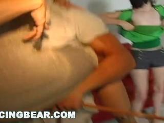 DANCINGBEAR - Stripper House Call Featuring The DancingBear db4713