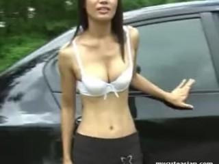 Slim Asian Brunette Shows Her Cat In A Car