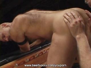 Sexy Bears Fuck