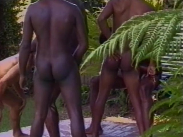 Jungle sort porno