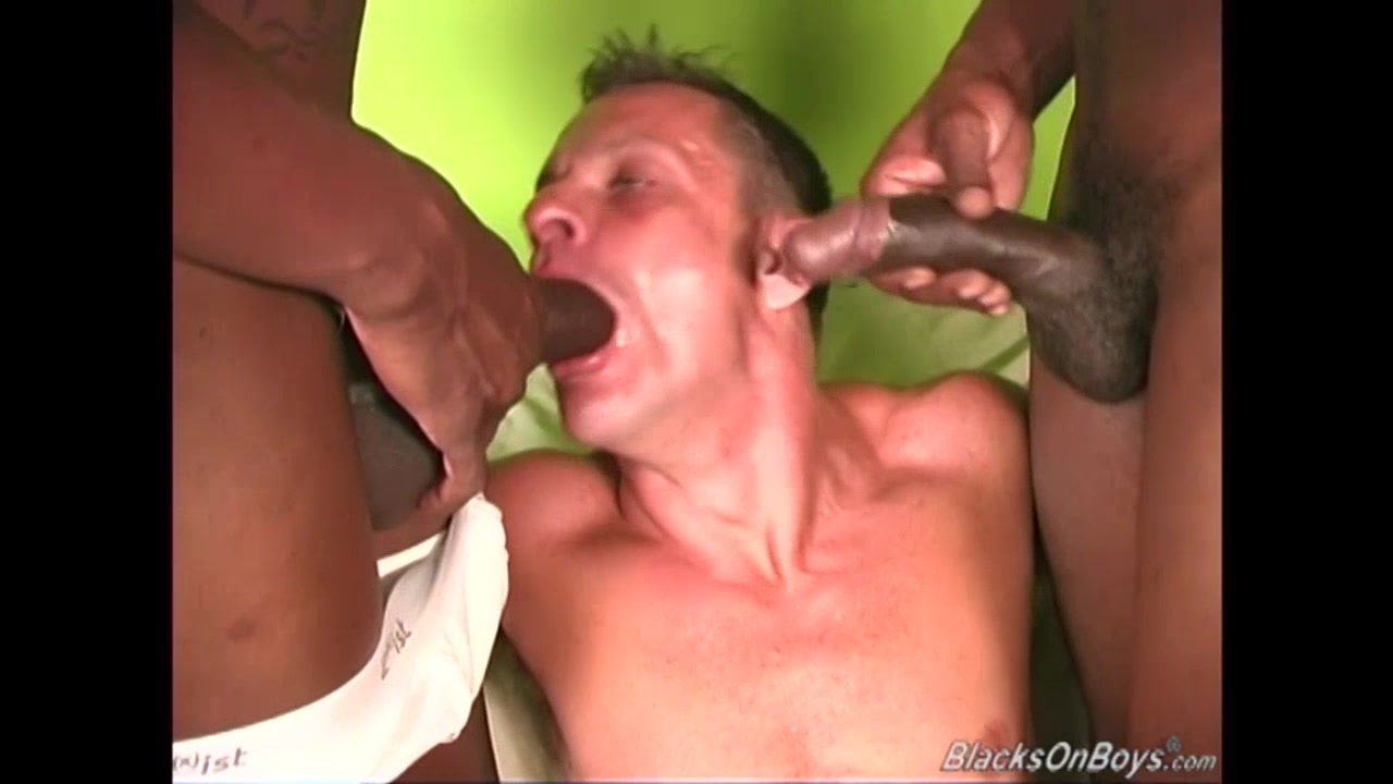 rocco anal story 8