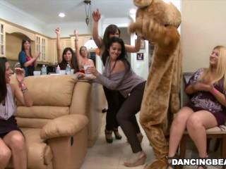 Hd/bear in dancing the watch