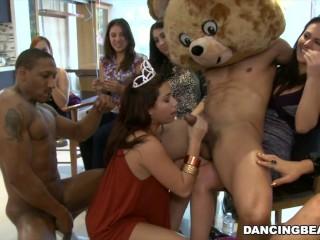 Girls/male db9747 bear birthday strippers