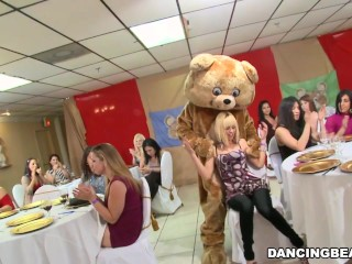 Female friendly/celebrate infamous party s bear