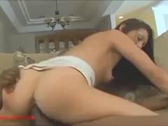 pussy_1878602