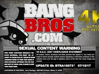 BANGBROS - Ashley Adams's Juicy Big Tits and Round Ass (btra16073)