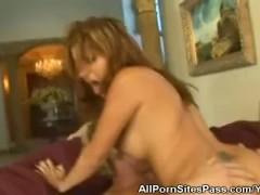 pussy_1997382