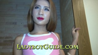 Ladyboy Guide XXX  Proportioned Delight For Service
