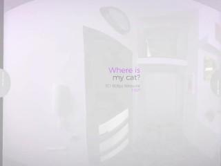 Transexual/trans/where virtualrealtrans com is cat my