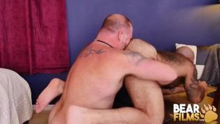 Big Bear Daddy Bareback Bangs Muscle Gay