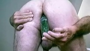 Fucking big cucumber up rolys arse