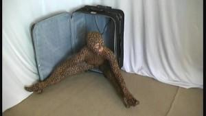 Flexible Rachel Girl in tiger catsuit