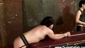 Gay in collar tied and kissed humiliated
