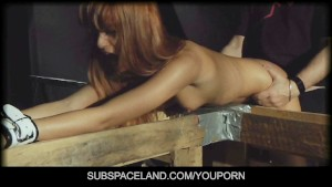 Two Gorgeous Slave Girl and the Bdsm Round