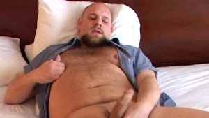 All Amateur Bears 2
