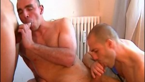 3 handsome guys with huge cock.