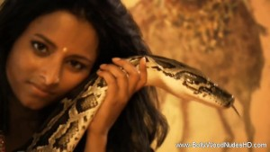 Kathak The Sensual Snake