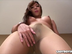 Curved Cock Asian Ladyboy in Pantyhose