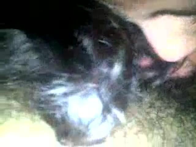 Chubby chicks masturbating videos