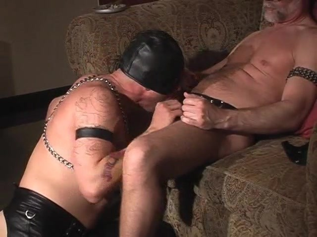 gay cock video production