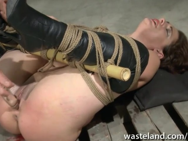 Tied Up And Butt Plugged And Pussy Insertion - Free Porn -1913