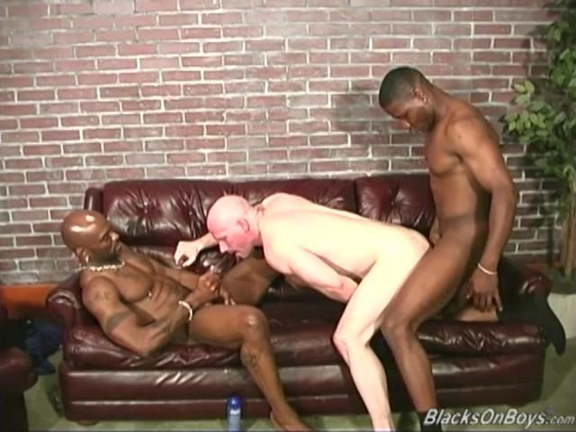 Pornstar escorts near charlotte nc