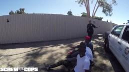 Screw the Cops - white...