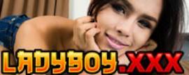 Ladyboy XXX