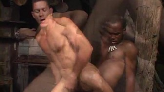 Chocolate Studs Suck And Fuck - Rock Hard Entertainment