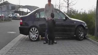 Street hooker fist fucked in public