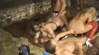 Who knew a barn is a great place for an orgy? - Telsev