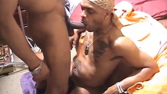Big black cock orgy - East Harlem Productions