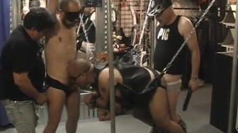 Toy-store sex-swing orgy - Pig Daddy Productions