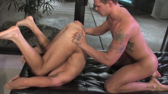 Getting pounded - Falcon