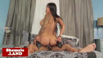 Bigass tattooed shemale riding cock