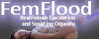Fem Flood