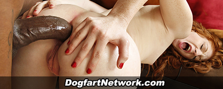 Dogfart Network
