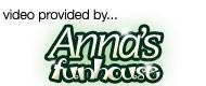 Annas Fun House