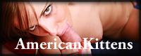 American Kittens